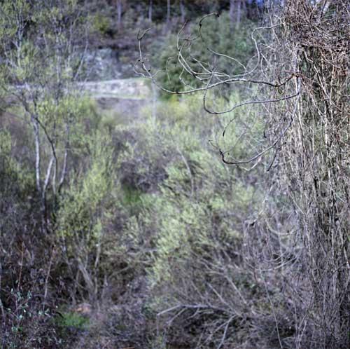 Un premier accrochage a lieu le 8 avril 1944 au pont de Négase, les maquisards se replient. Les Allemands pillent Saint-Étienne, mettent le feu au château, rejoignent Saint-Jean-du-Gard et demandent des renforts.