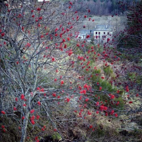 Un temps séparés, les maquis se retrouvent le 1er mai 1944 au château des Fons, vers l'Aigoual. Alors que la plupart des maquisards partent en expédition à Clermont-l'Hérault, le château, gardé par les antifascistes allemands, est attaqué le 12 mai 1944 par quatre cents à cinq cents soldats allemands.