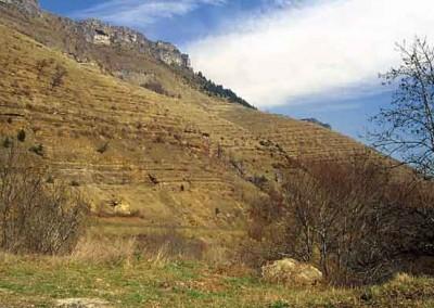 Couches sédimentaires calcaires de Fraissinet-de-Fourques vers le col du Perjuret.
