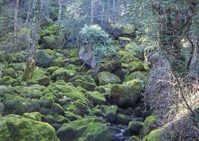 La source du Pêcher à Florac est située à la limite entre le schiste et le calcaire, à Florac.
