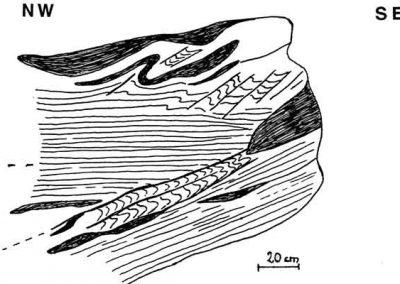 Dessin du schiste plissé avec 2 schistosités.