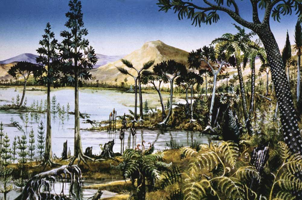 Paysage des Cévennes au Carbonifère, il y a 300 Ma. Dessin de Bep Phalip d'après les études de G. Galtier.