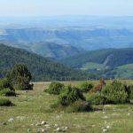 La route de l'histoire des roches et des paysages des Cévennes