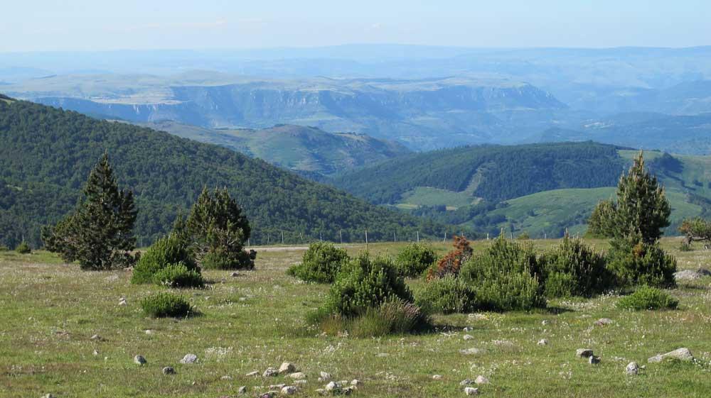 Vue du granite de l'Aigoual sur le Causse calcaire et les Cévennes schisteuses.