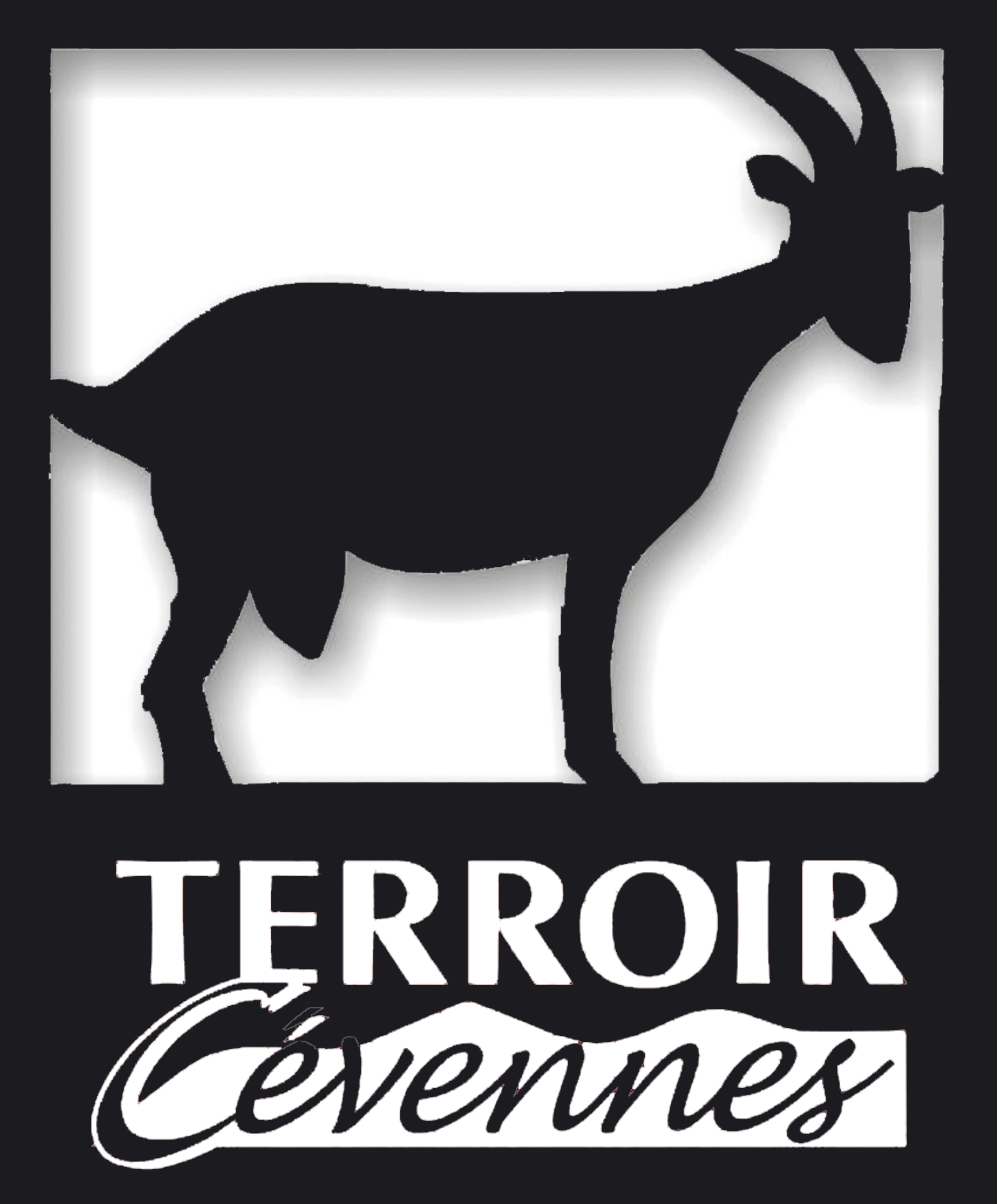 Le site de Terroir Cévennes