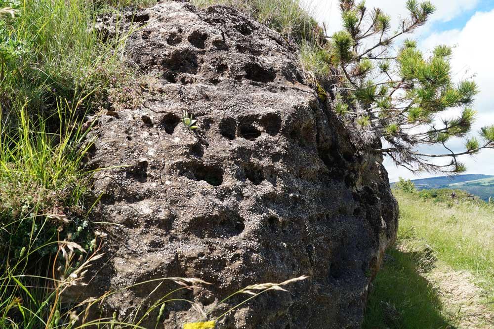 Figure d'érosion dans les calcaires gréseux (Photo Robert Guin)
