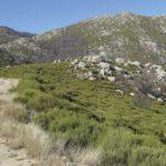 L'arrivée des granites – Génolhac