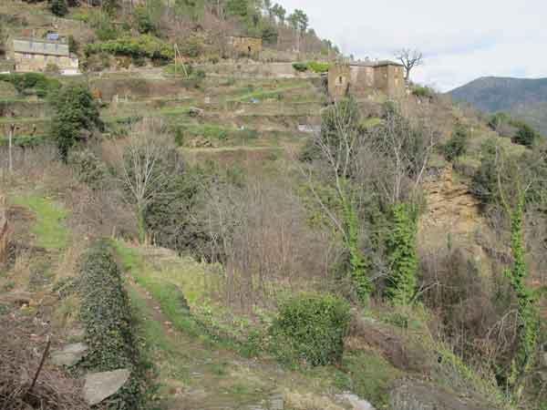 Calquieres-Maison-sur-rocher