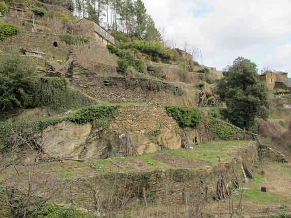 Terrasses construites sur le rocher dans le site des Calquières à Saint-Germain-de-Calberte.