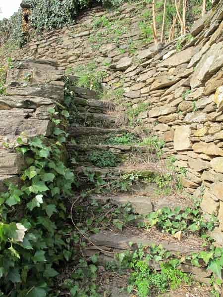 Escalier construit dans un mur du site des Calquières à Saint-Germain-de-Calberte.