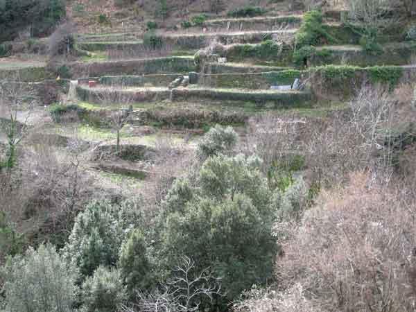 Terrasses du site des Calquières à Saint-Germain-de-Calberte.