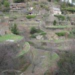 Un système de terrasses en pierres sèches, les Calquières