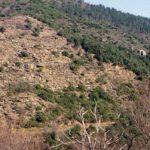 Protégé: Glissement de terrain à Saint-Germain-de-Calberte