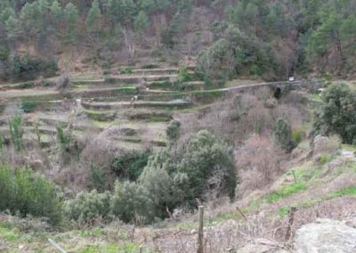 Le site des Calquières forme un U entre deux valats.