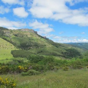 Vue sur la vallée du Tarnon