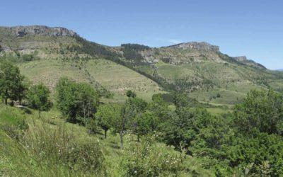 Stratigraphie du Causse…vers le col du Perjuret