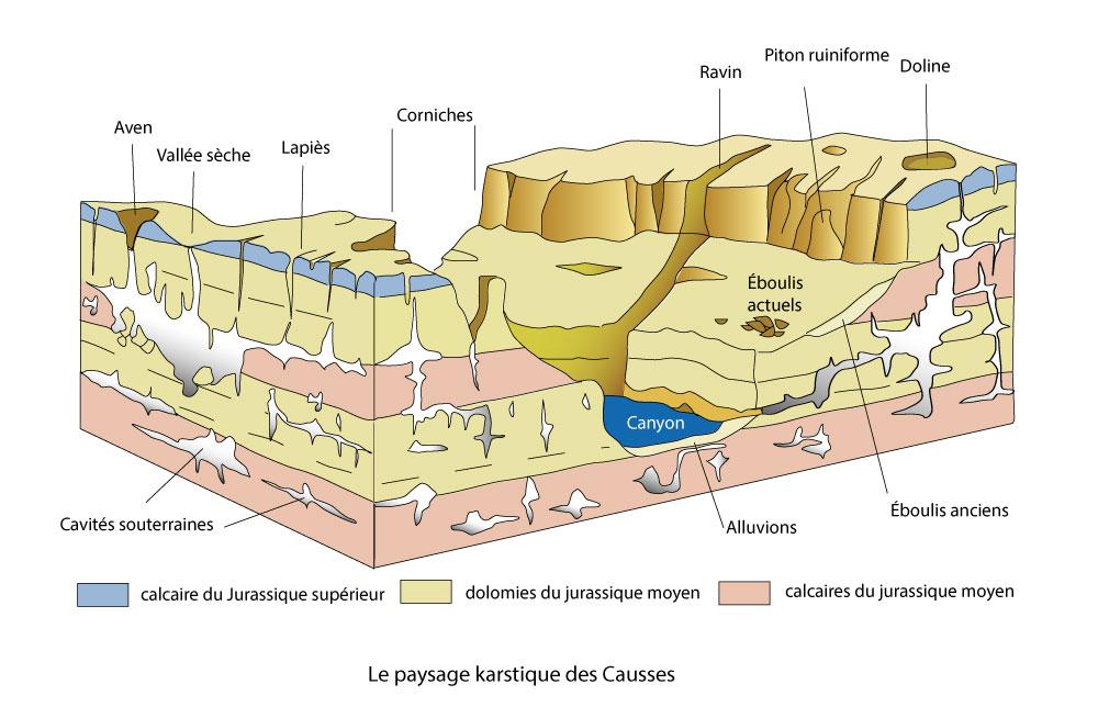 Le paysage karstique des Causses