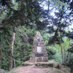 L'arboretum de l'Hort-de-Dieu