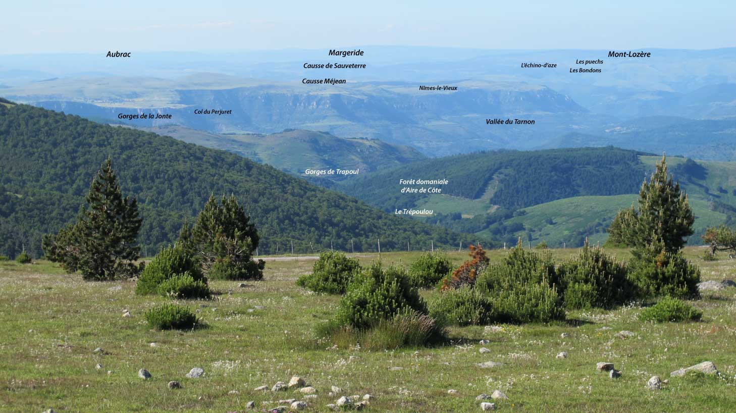 Panorama vu de l'Aigoual vers le nord vers le causse Méjean