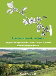 Abeille, arbre et territoire