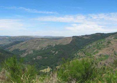 Filons de quartz dans le paysage vu sur le Causse