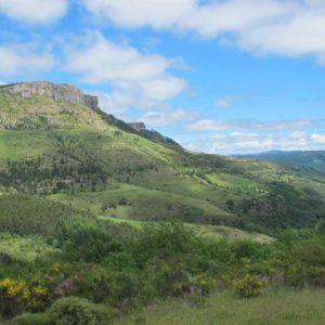 Vue du col du Perjuret sur la vallée du Tarnon vers Fraissinet-de-Fourques