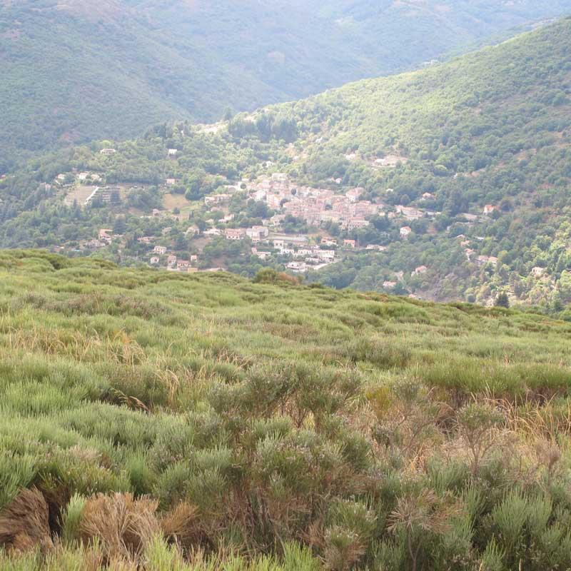 Vialas vu du col de Montclar (photo Robert Guin)
