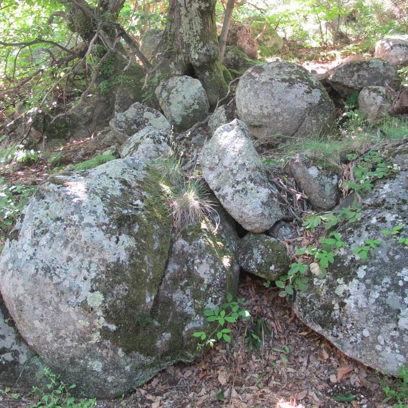 Chaos granitique dans la forêt vers Montclar (photo Florence Arnaud)